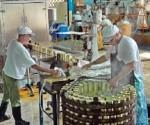 produccion maya beque