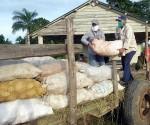 Cuba produccion