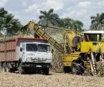 cuba agricultura